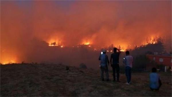 Adana'da orman yangını sürüyor
