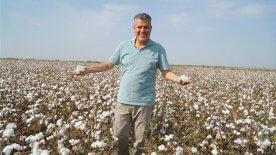 CHP'li Barut: Çiftçimiz desteklenirse pamukta 2 milyar dolarlık açık kapanır